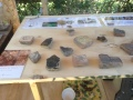 Archaeological finds from the Abbey grounds.